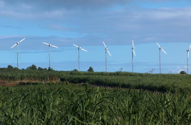 Fermes éoliennes de Petite Place et du Morne Constant