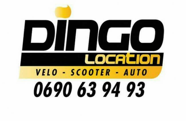 DINGO LOCATION
